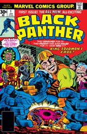 Black Panther Comics (1977 Series)