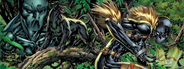 Black Panther 2 comics from Marvel Comics in 2009